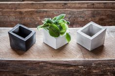 Fatty ANGL concrete planter #concreteplanter #concrete #geometric #modern