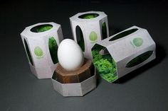 Eggrow - kevincraftdesign #egg #shell #grow #package #green