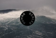 Chevychase Design Direction #waves #water #branding
