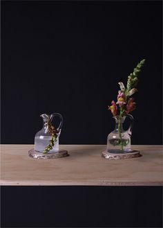 Calico, from Time Capsule (2014) Artist: Isabel Sierra y Gómez de León http://isabelsierraygomezdeleon.com/post/91656261513/timecapsule #color #composition #technology #photography #art #flower #still #shelf #life