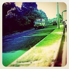 Cardenal #vintage #road