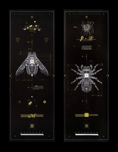 Anatomy of Mechanical Insects