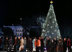 18 Christmas tree on White house #christmas #trees #art #tree