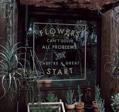 Flowers can't solve all problems - but they're a great start!: