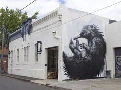 deansunshine_landofsunshine_melbourne_streetart_graffiti_ROA echidna fitzroy 10 1024x767 #koa #hedgehog