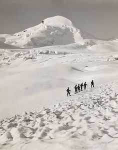 1321115. A group of climbers ascend the Allalinhorn in single file. - NG Stock Photography #mountain #swiss #white #snow #black #photography #and