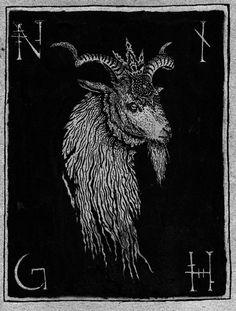 NATVRES MORTES ILLVSTRATION ∆ #goat