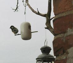 Vogelimbiss | Stilsucht