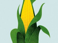 #illustration #corn