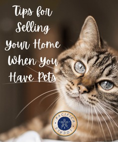 How to Sell Your House When You Have Pets   7 Must-Know Tips for Selling Your Home When You Have Pets