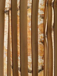 Birch tape decor #interior #painting #art #kids #apartment #room