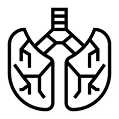 See more icon inspiration related to lung, breath, healthcare and medical, anatomy, body parts, lungs, human body, organ, body part and medical on Flaticon.