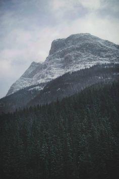 Sleepless Dreams | ilaurens: Rockies By: (Tasha Maríe) (Follow... #rockies #mountain #landscape #wood #photography #america #forest #epic