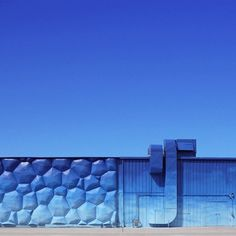 #Photography by Hayley Eichenbaum