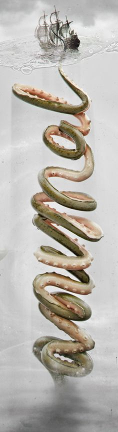 A N I M A L on Behance #kraken #species #type #animal #3d #typography