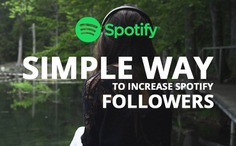 Sharefans facilitates wonderful service for those who looking to increase spotify followers and boost their popularity in very short time period.