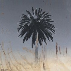 perceptions - Jake Hart Art #interior #faded #palm #tree #rustic #design #wood #summer #art