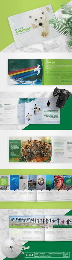 Design by Shanti Sparrow Client: Greenpeace Project Name: Welcome Brochure #Design #graphicdesign #welcome #layout #environmental #magazine
