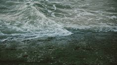 //// #seaside #photography #sea #waves #green