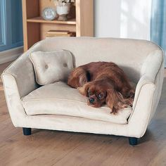 Astro Pet Bed by Enchanted Home #tech #flow #gadget #gift #ideas #cool