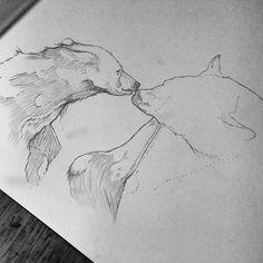 Pencil, Sketch, Illustration, Bear, Micheal Hanly