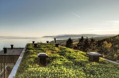 Malbaie V Residence is Fully Covered with a Green Roof