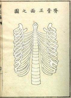 Kaishi Hen, an 18th Century Japanese anatomical atlas | The Public Domain Review #anatomy #japan