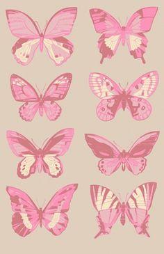 {gallery} rafa jenn gallery #butterflies #print #denver #rafa #colorado #insect #art #jenn