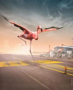 Surreal and Dreamlike Photo Manipulations by Hassan Hajila