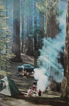 (10) Tumblr #camping