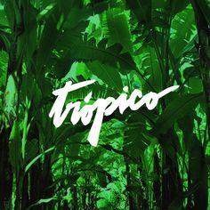 Trópico • Elemasele Studio  #lettering #typography #tropic #tropical #banana #letters #typographic #handmade #green #design #graphicdesig