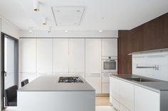 Apartment Renovation in Paris IV