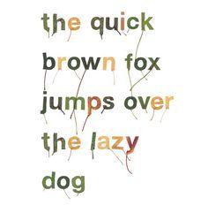leaf alphabet | iGNANT #leaf #typography