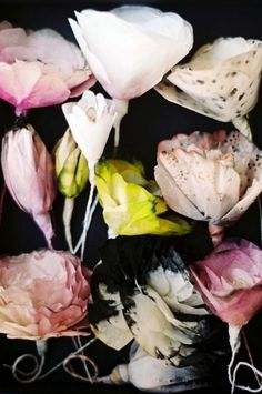 Anthology Magazine | Artists | Paper Flowers by Lyndie Dourthe #paper #floral #flowers
