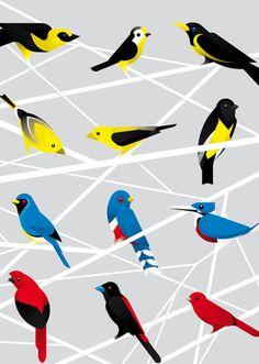Andy Tomlinson — Senior Designer at Bite #birds