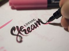 Stream #mark #calligraphy #lettering #branding #logo #identity #brush #type #sketch #typography