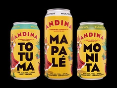 Packaging Design for Andina Brewing Company