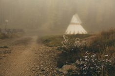 Likes | Tumblr #forest #autumn #tipi