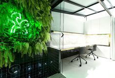 Design That Connects with Nature – Tiovivo Creativo Release Their Offices - InteriorZine