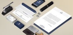 #branding #rebrand #handle #lion #accountants #blue