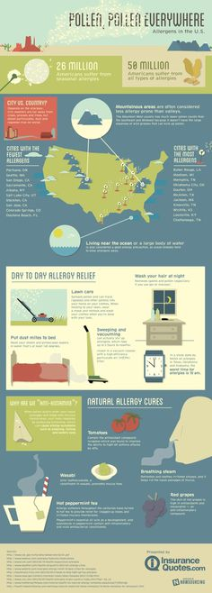 Pollen, Pollen Everywhere! #pollen #infographic #design #health #allergies