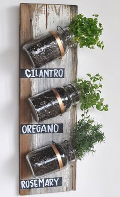 vertical_mason_jar_garden #jars #plants