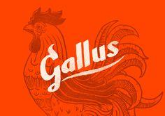 Monodois | Logofolio 2012/2013 on Behance #logotype #rooster #lettering #branding #rustic #restaurant #fried #chicken #wings #buffalo