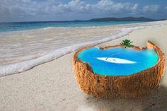 island coconut #island #beach #coconut
