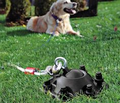 Sureswivel Pet Tie-Out #pet #gadget #home