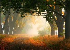 Landscape Photography by Przemysław Kruk #inspiration #photography #landscape