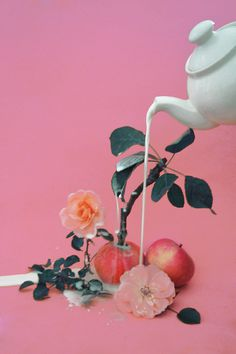 domsebastian: magic apple plant #milk #apple #pour #pink #flower #grow #photography #teapot #surreal #plant