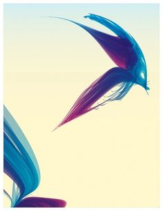 Blue/Green Pastel inspiration | Sarah Angela - Visions | Part I of II on the Behance Network