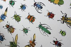 Beetles #bugs #illustration