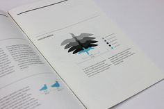 Conservation Report 2012 #scale #type #turquoise #charcoal #black #clean #grid #key #grey #report #blue #typography